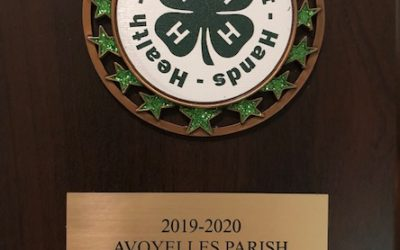"RRCA 4-H ""Most Outstanding Club in Avoyelles"""